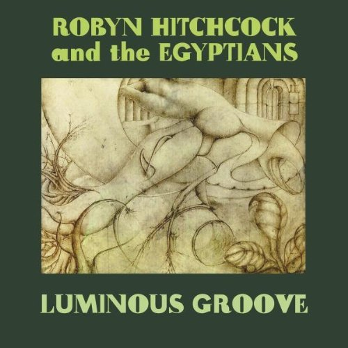 Robyn Hitchcock Luminous Groove Luminous Groove