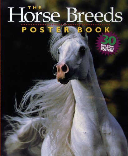 Bob Langrish The Horse Breeds Poster Book