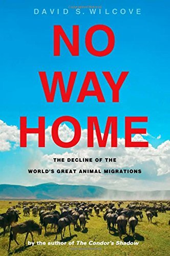 David S. Wilcove No Way Home The Decline Of The World's Great Animal Migration