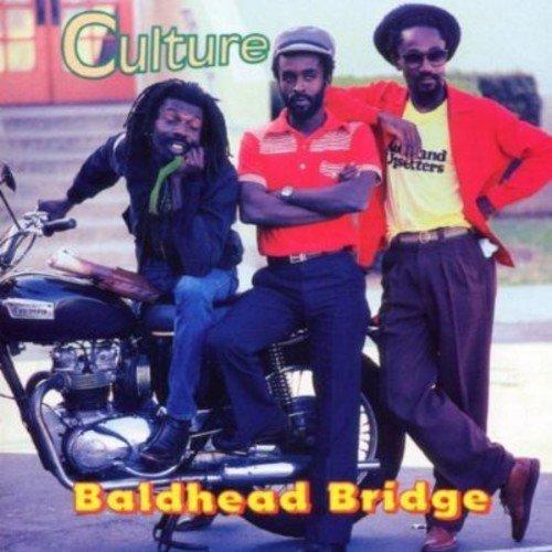 culture-baldhead-bridge-