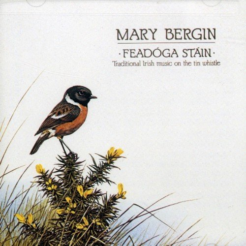 Mary Bergin/Feadoga Stain@.