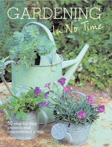 Tessa Evelegh Gardening In No Time 50 Step By Step Projects And Inspirational Ideas