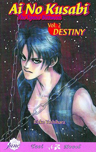 reiko-yoshihara-ai-no-kusabi-the-space-between-volume-2-destiny-yaoi-novel