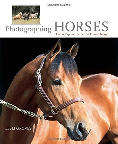 Lesli Groves Photographing Horses How To Capture The Perfect Equine Image