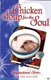 Chicken Soup For The Soul Inspirational Stories For The Clr Nr