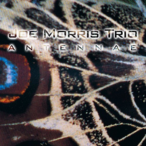 joe-trio-morris-antennae