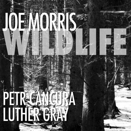 Morris Cancura Gray Wildlife