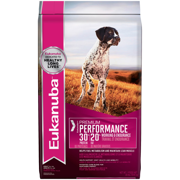 eukanuba-dog-food-premium-performance