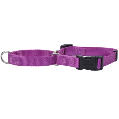 hollywood-feed-combo-collar-purple