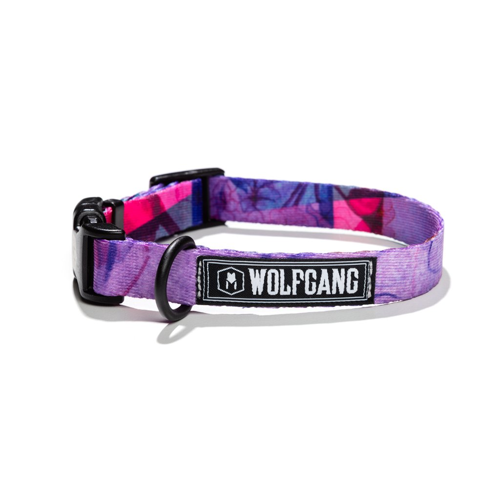 wolfgang-dog-collar-day-dream-5-8-wide