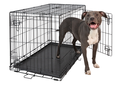 hollywood-feed-dog-crate-double-door-36