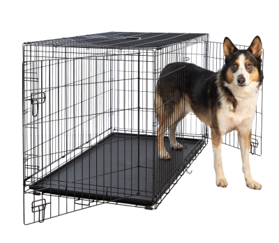hollywood-feed-dog-crate-double-door-48
