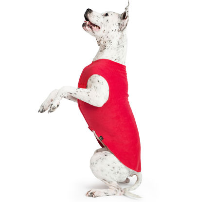 gold-paw-fleece-red
