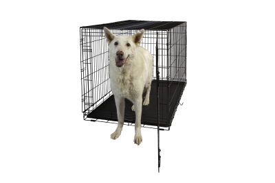 hollywood-feed-dog-crate-single-door-48