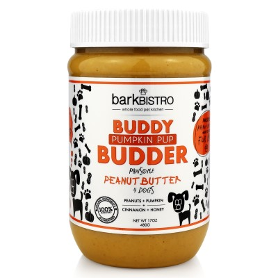 buddy-budder-dog-treat-pumpkin-pup-peanut-butter