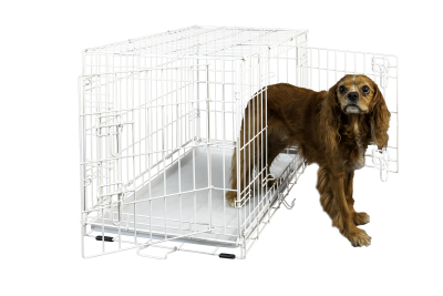 hollywood-feed-dog-crate-double-door-white-30