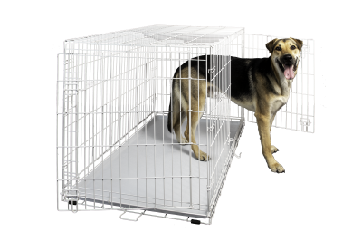 hollywood-feed-dog-crate-double-door-white-48