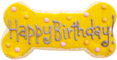 hollywood-feed-fresh-bakery-yellow-birthday-cookie