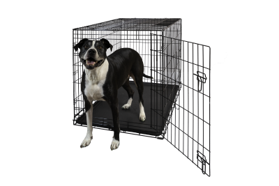 Hollywood Feed Dog Crate Single Door 42 Hollywood Feed Your Lo