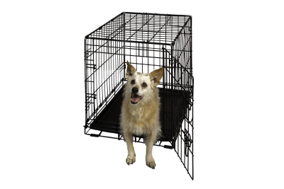 Hollywood Feed Dog Crate Single Door 24 Hollywood Feed Your Lo