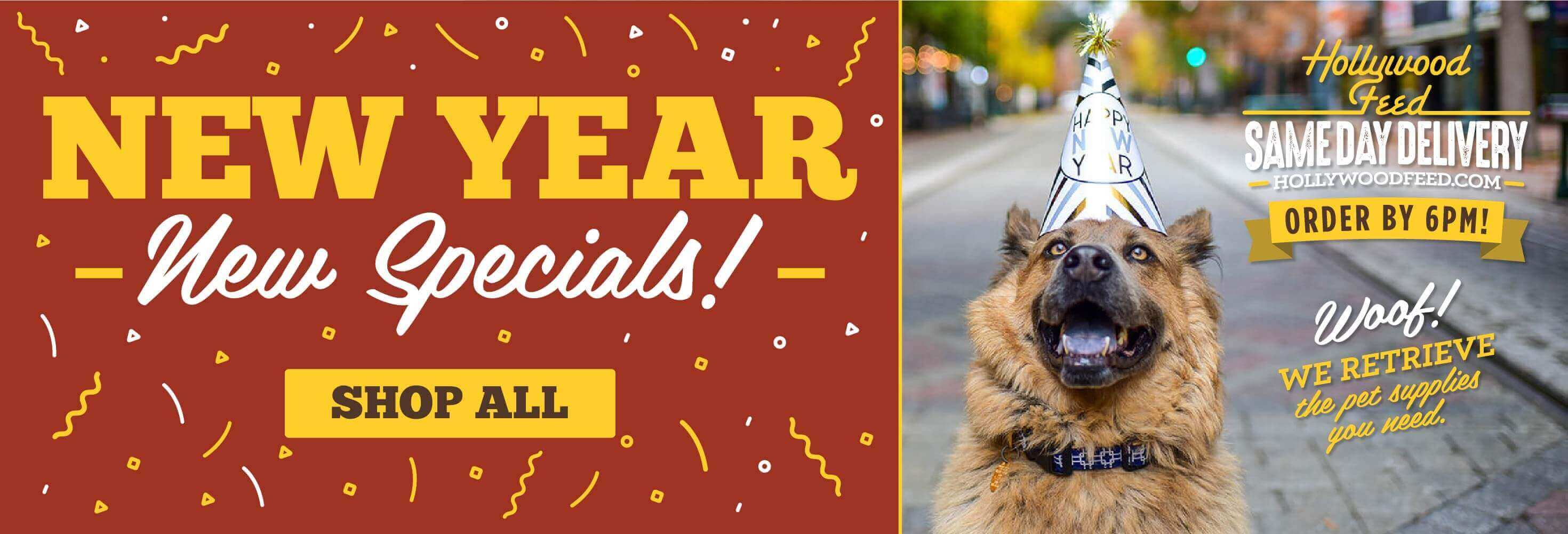 Header Image for January Specials