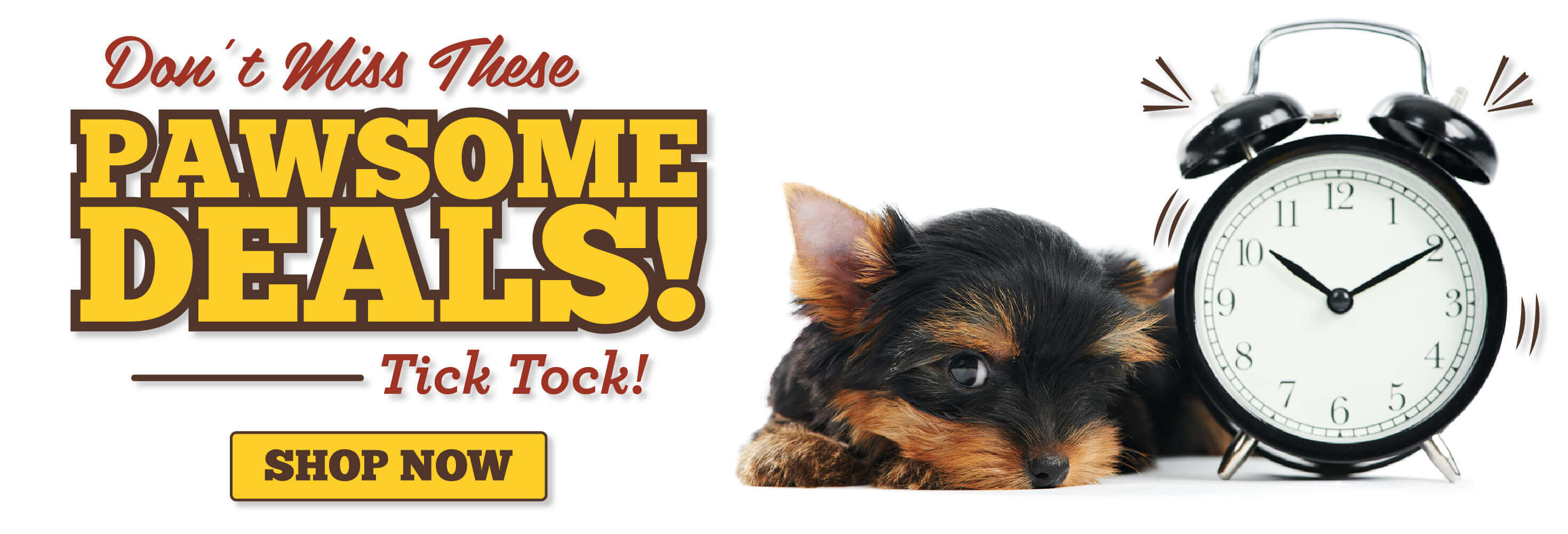 Don't miss these pawsome deals tick tock, link to shop now,picture of dog next to an alarm clock